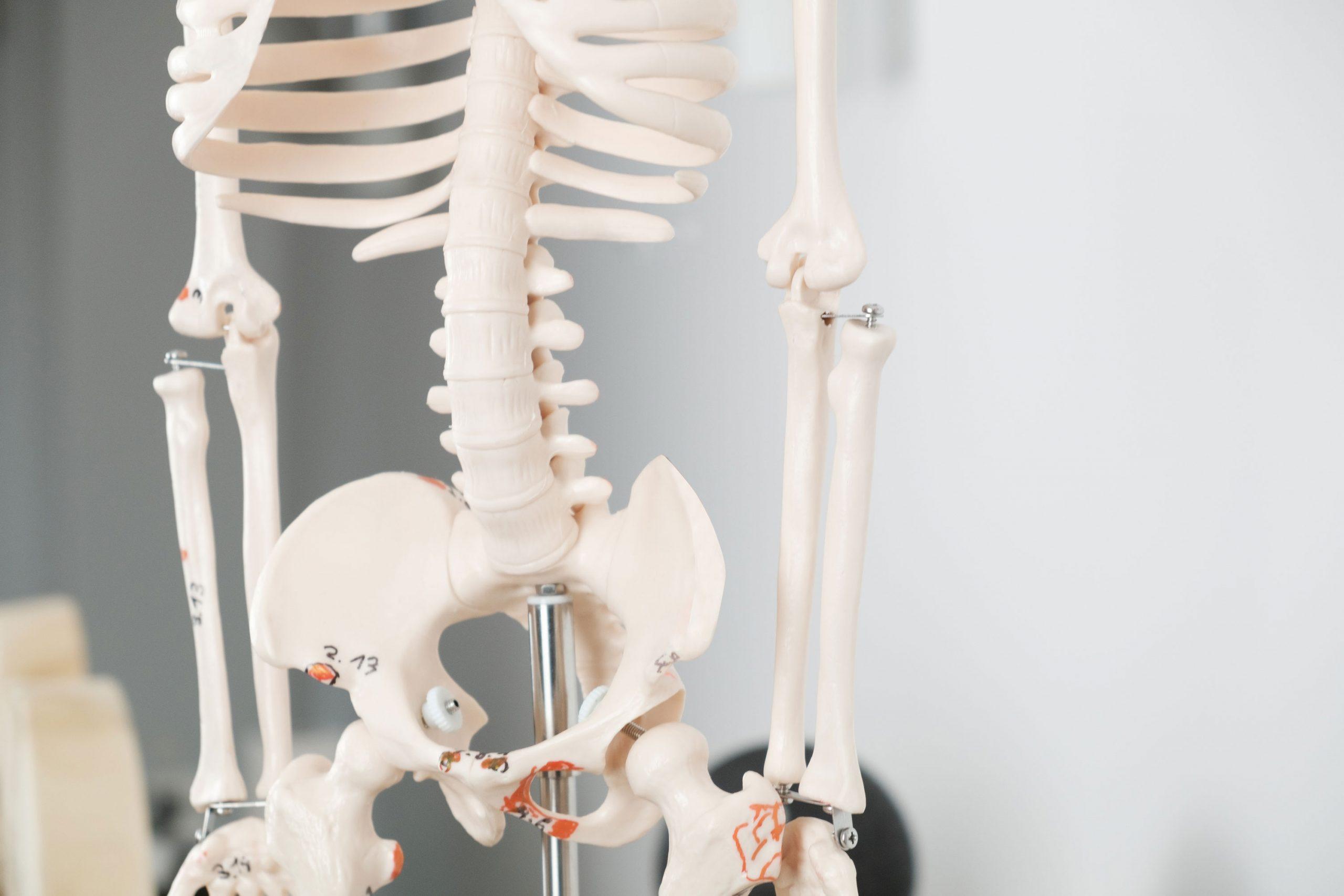 Schmerztherapie von Physiotherapie Nölting Wuppertal